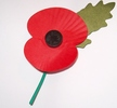 "Original title:    Description An artificial corn poppy, made of plastic and cardboard by disabled ex-servicemen, worn in the United Kingdom and other Commonwealth countries from late October to Remembrance Sunday in support of the Royal British Legion's Poppy Appeal and to remember those servicemen and women who died in war. Wearing poppies to remember the war dead comes from the poem In Flanders' Fields by Lieutenant-Colonel John McCrae which concludes with the line ""We shall not sleep, though poppies grow, In Flanders fields"". Although originally worn to commemorate those who fell in the First World War, poppies are also worn for the fallen of every conflict since. Date 2007-11-17 Source Own work Author Philip Stevens  The full version of 'In Flanders Fields' the poem goes:    In Flanders fields the poppies blow  Between the crosses, row on row,  That mark our place; and in the sky  The larks,"