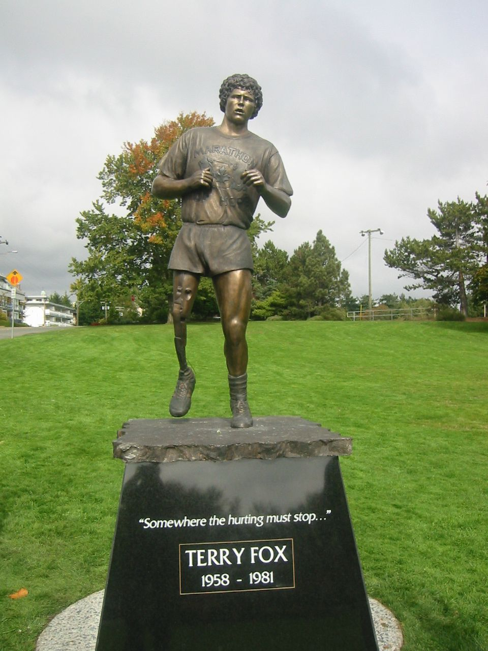 TERRY FOX BIOGRAPHY PDF DOWNLOAD