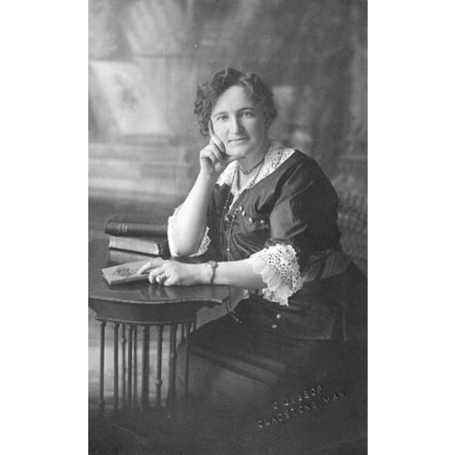 essay on nellie mcclung Free essay: a women's rights to equality in canada every woman has the   furthermore, another female canadian named nellie mcclung.