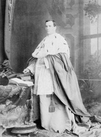 Original title:  Archbishop Cornelius O'Brien.