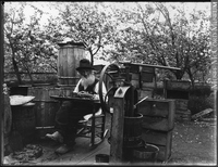 Original title:  Photograph Francis Peabody Sharp saving apple seeds, Woodstock, NB, 1901 Edwin Tappan Adney 1901, 20th century Silver salts on glass - Gelatin dry plate process 16 x 21 cm MP-1979.111.108 © McCord Museum Keywords:  outdoor (47) , Photograph (77678) , portrait (53878)